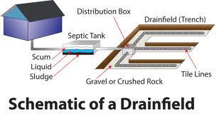 Diagnosing A Septic Tank Drainfield Problem Lenzyme Bio